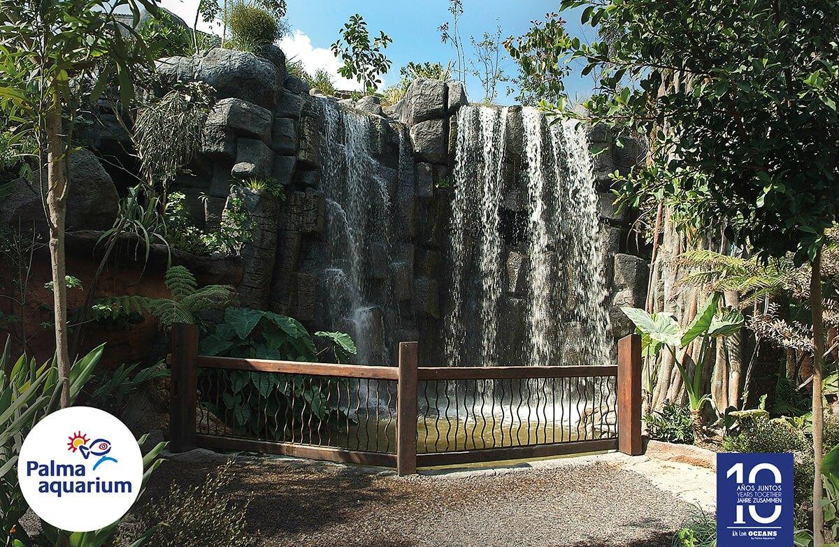 jungla en palma aquarium