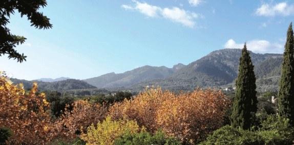 planes en Mallorca en la fase de normalidad